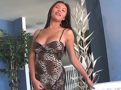Attractive long haired asian brunette shemale Taylor Stewart with pretty face and big firm boobs in sexy tight dress and high heels teases with juicy ass in hot solo session.